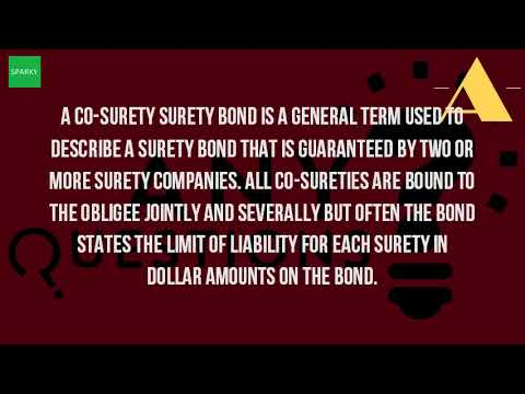 What Is A Co Surety?
